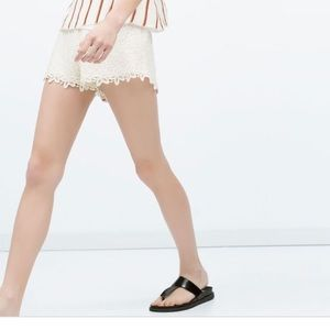 Zara Crochet Shorts
